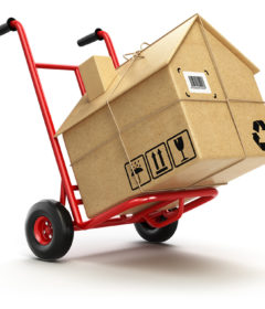 Movers - Some Tips in Hiring