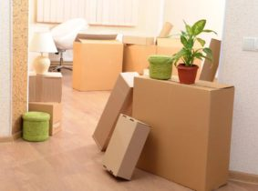 Moving And Storage: Complex Business